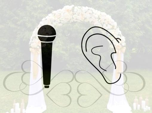 mic ear.001